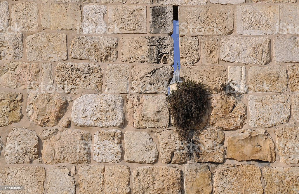 Part of Temple Mount Wall royalty-free stock photo
