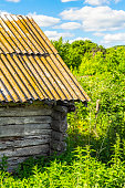 istock Part of the abandoned wooden hut 585169308