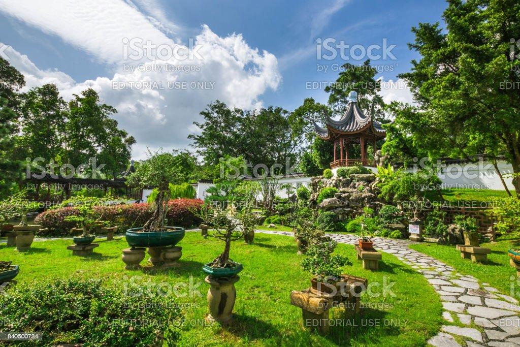 Part of the Bonsai Garden stock photo