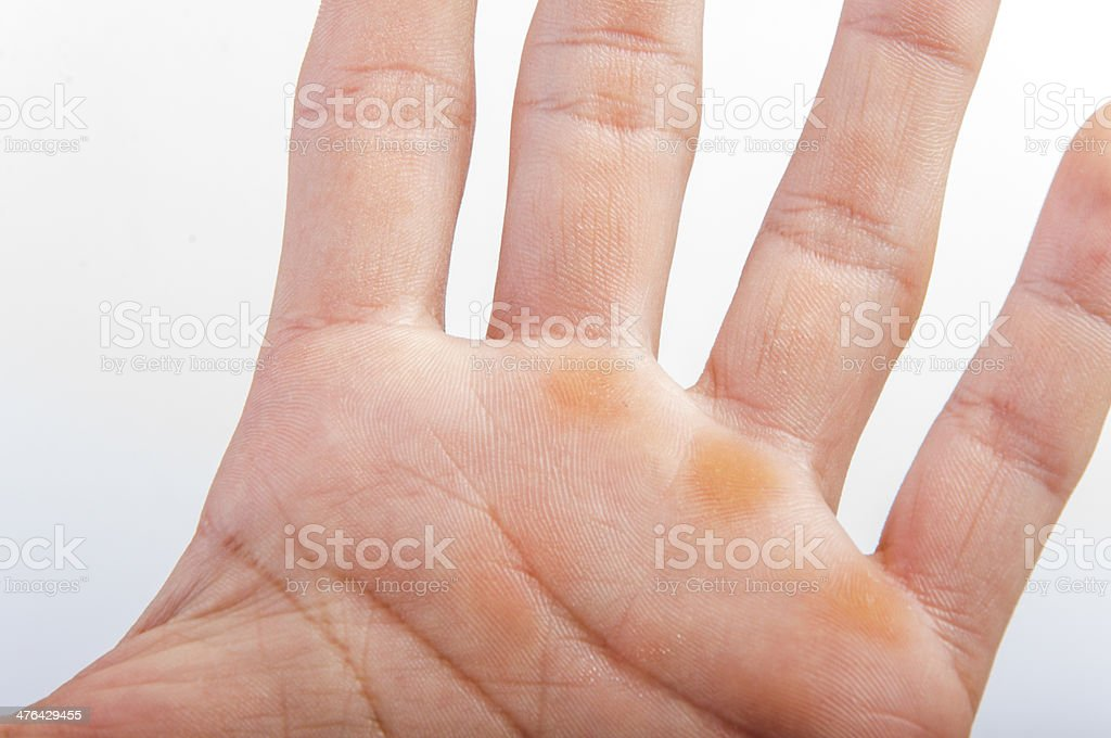 Part of the hand An image of hand center on white background Adult Stock Photo