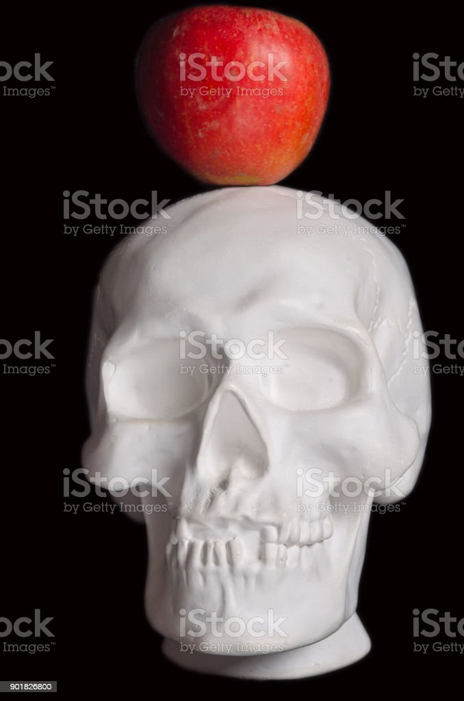part of the white plaster human skull and a red apple on a black background stock photo