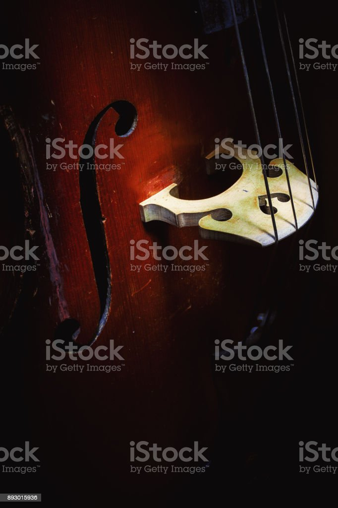 Part of Upright Bass stock photo