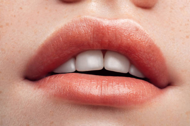 Part of woman's face. Woman's lips and nose. Soft skin. Part of woman's face. Woman's lips and nose. Soft skin. human lips stock pictures, royalty-free photos & images