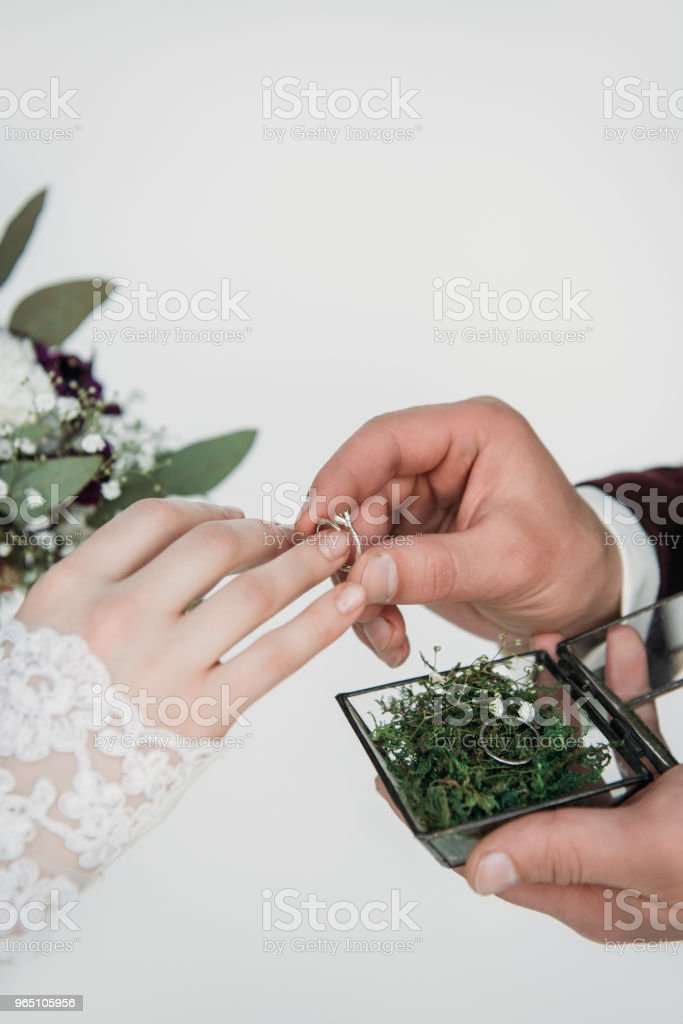 partial view of groom wearing wedding ring on bridal finger zbiór zdjęć royalty-free