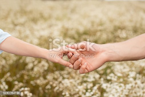 partial view of lovers holding hands with wild flowers on background