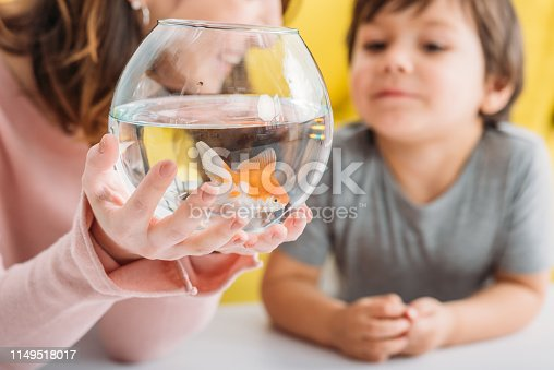 109350576 istock photo partial view of smiling woman holding fish bowl with bright gold fish near cute son 1149518017