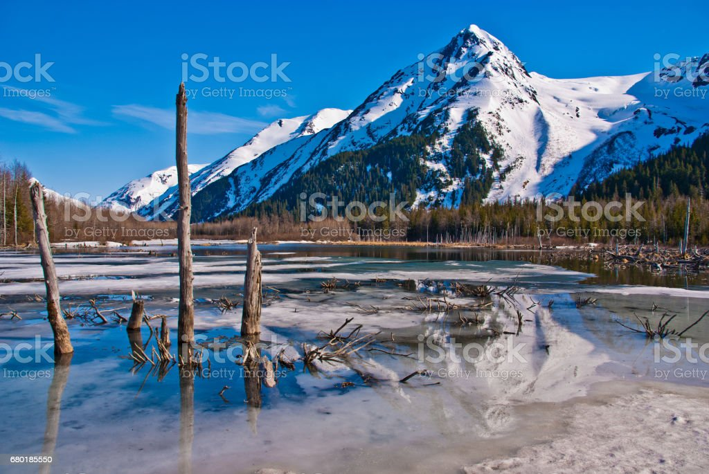 Partially Frozen Lake with Mountain Range Reflected in the Great Alaskan Wilderness. stock photo