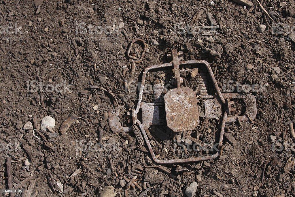 Partially hidden leghold trap stock photo