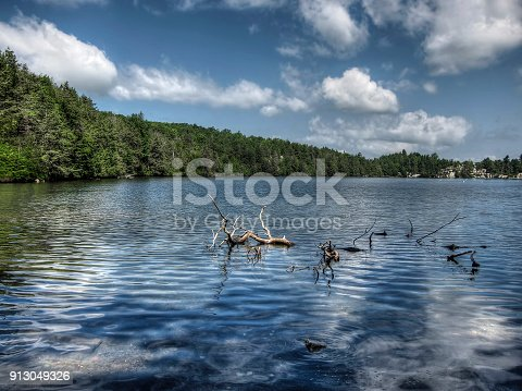 A view looking across Lake Minnewaska with submerged trees limbs.