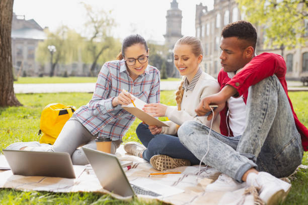Participants of exchange program studying together stock photo
