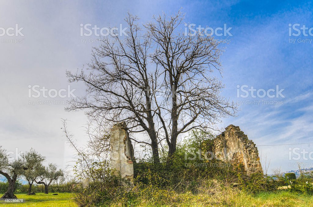 particular hause stock photo