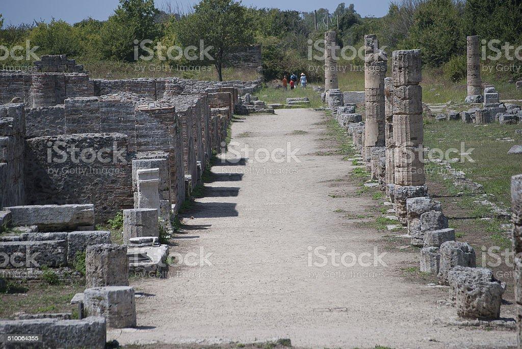Particular road of the ruins Paestum stock photo