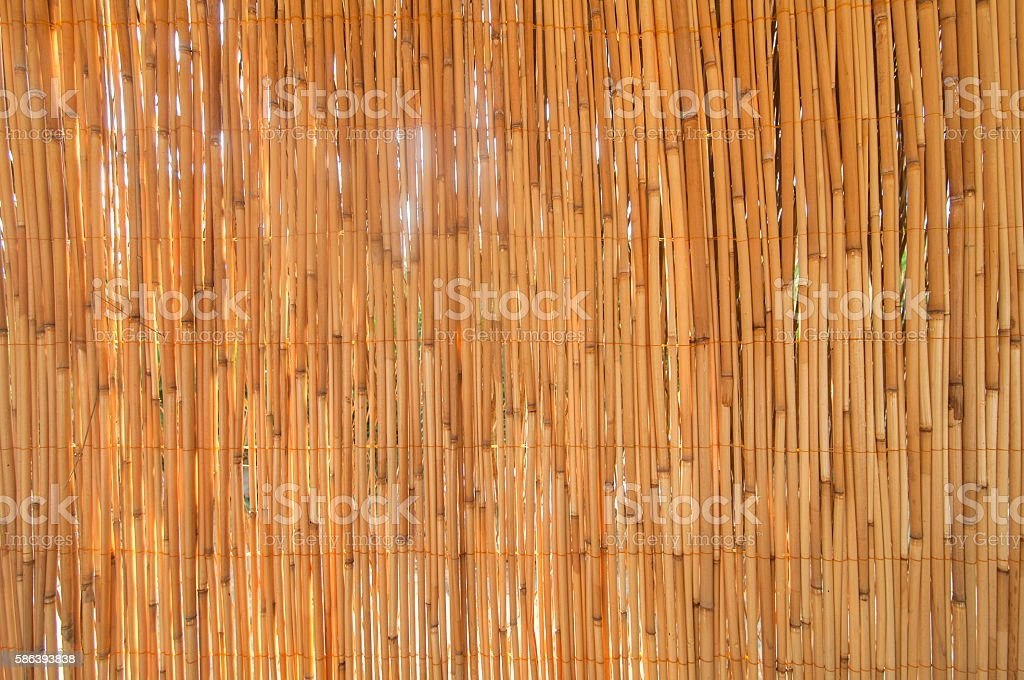 Partition of dried bamboo backgrounds stock photo