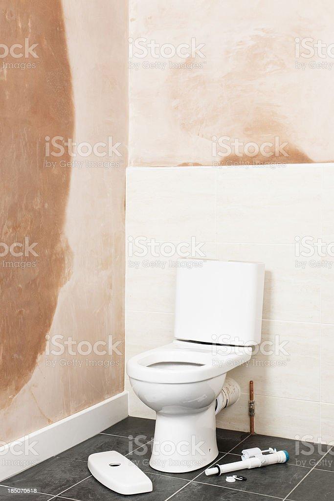 Teilweise Installiert Toilette Im Badezimmer Renoviert Stockfoto und ...