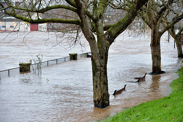 Partly submerged summer seats beside a swollen river stock photo