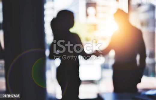 istock Partnerships are the backbone to strengthening business 912547898