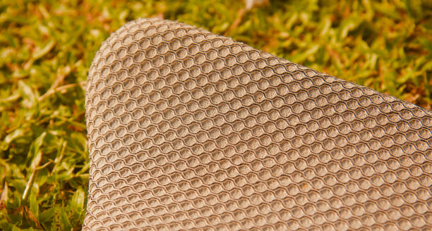 Parts of a cricket thigh pads unique photo stock photo