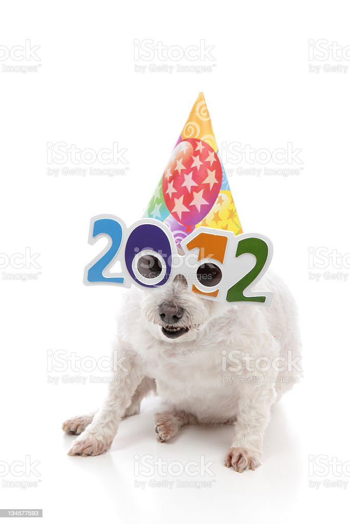 Party Celebrate New Year 2012 royalty-free stock photo