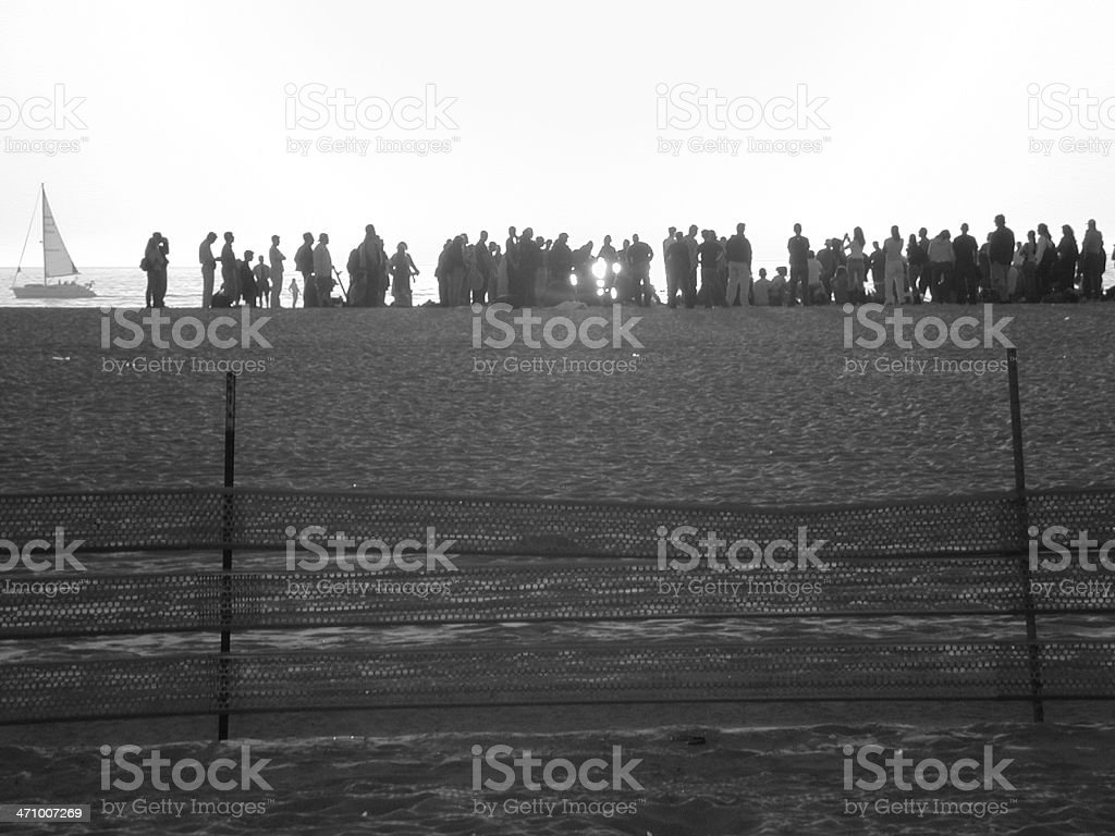 Party in the Sunset - Royalty-free Adult Stock Photo