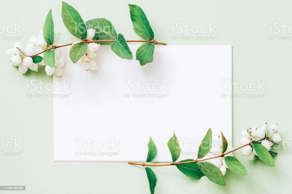 Party invitation. White mockup paper sheet with green mistletoe...