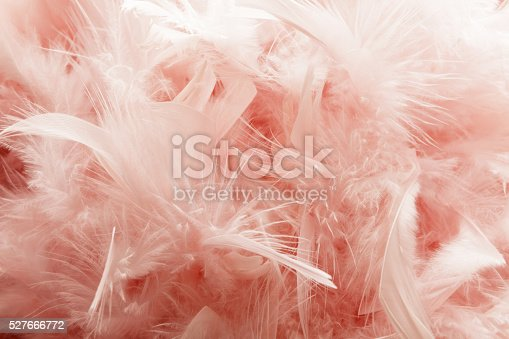 istock Party: Pink Fether Background 527666772