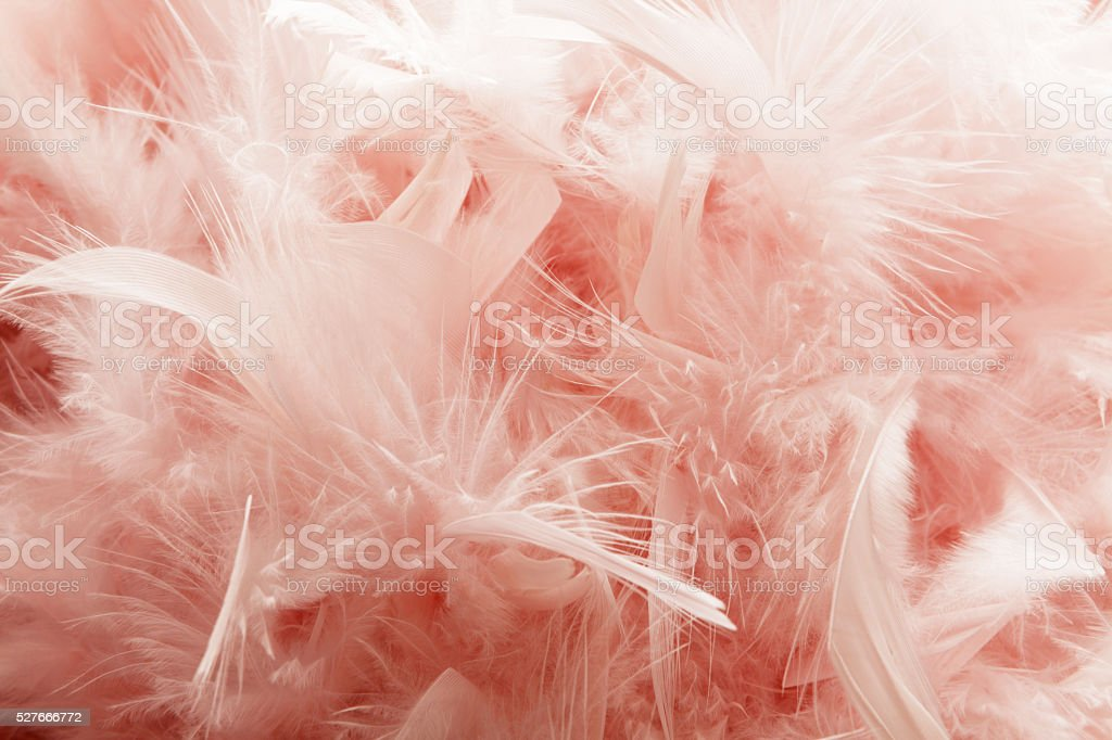 Party: Pink Fether Background stock photo