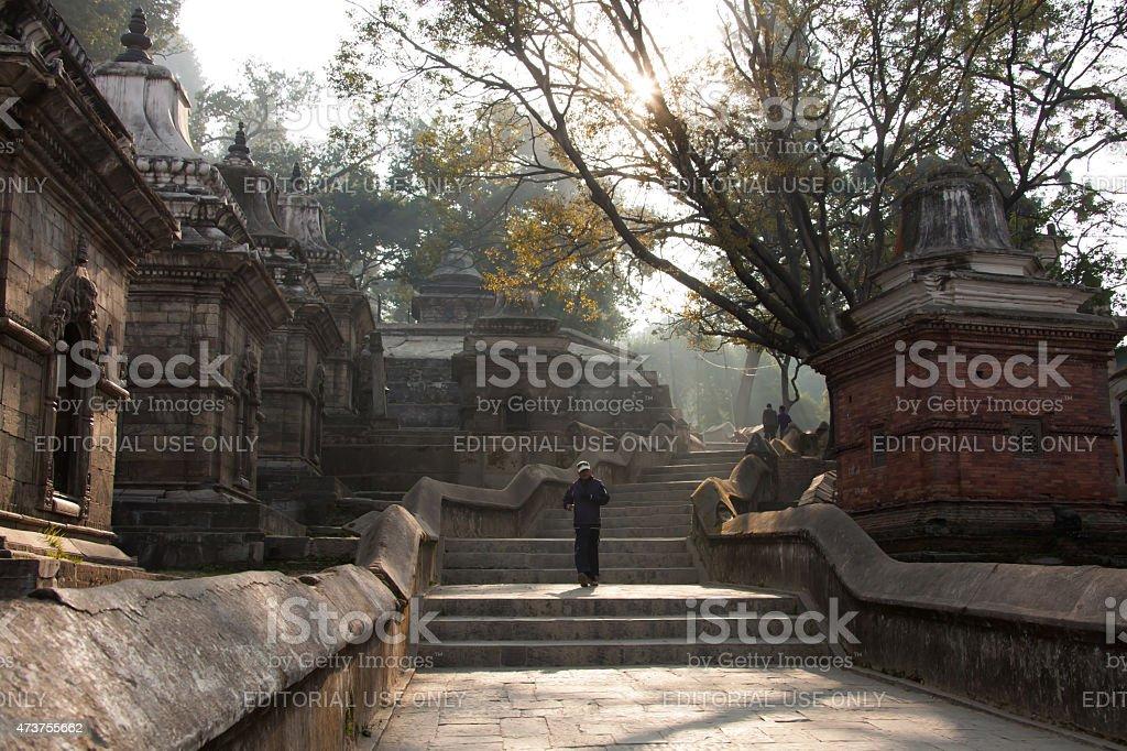 Pashupatinath Temple in Kathmandu, Nepal. stock photo