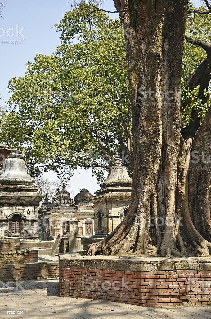 Pashupatinath Temple royalty-free stock photo