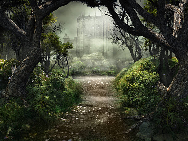 passage to mysterious castle - castle stock pictures, royalty-free photos & images