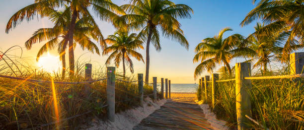 passage to the beach at sunrise - south stock photos and pictures