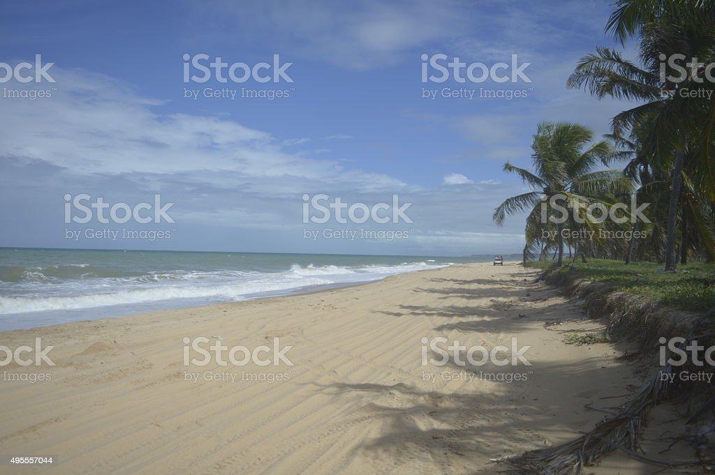 Passeio de buggy na praia do Guandu - foto de acervo