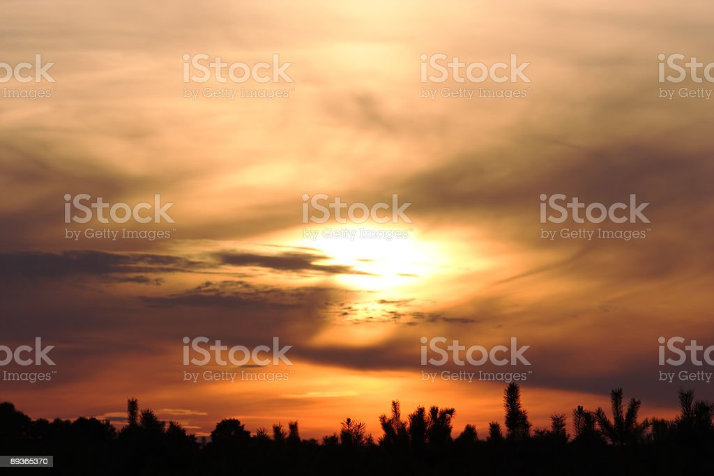 Passion in the sky royalty-free stock photo