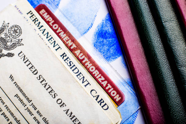 Passport and green card USA permanent resident card (Green Card) with Employment Authorization card next to passports and fingerprints green card stock pictures, royalty-free photos & images