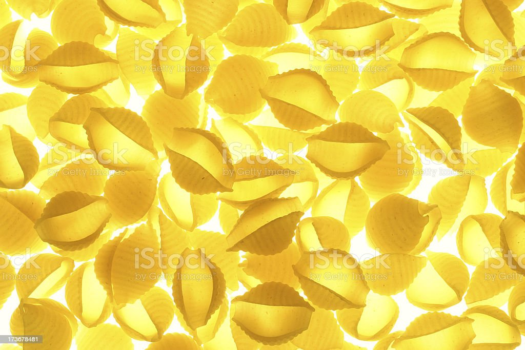 Pasta - Conchiglie royalty-free stock photo