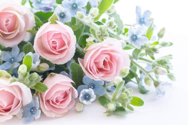Pastel bouquet picture id1171506639?b=1&k=6&m=1171506639&s=612x612&w=0&h=ouggrwgmabrhnwzkttc3jxiyrcnvhe nfa3u 6and m=