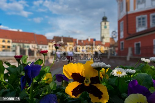 Spring in Sibiu, Romania. Focusing on the flower and creating beautiful bokeh in the background