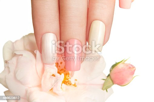istock Pastel manicure with rose. 486623612