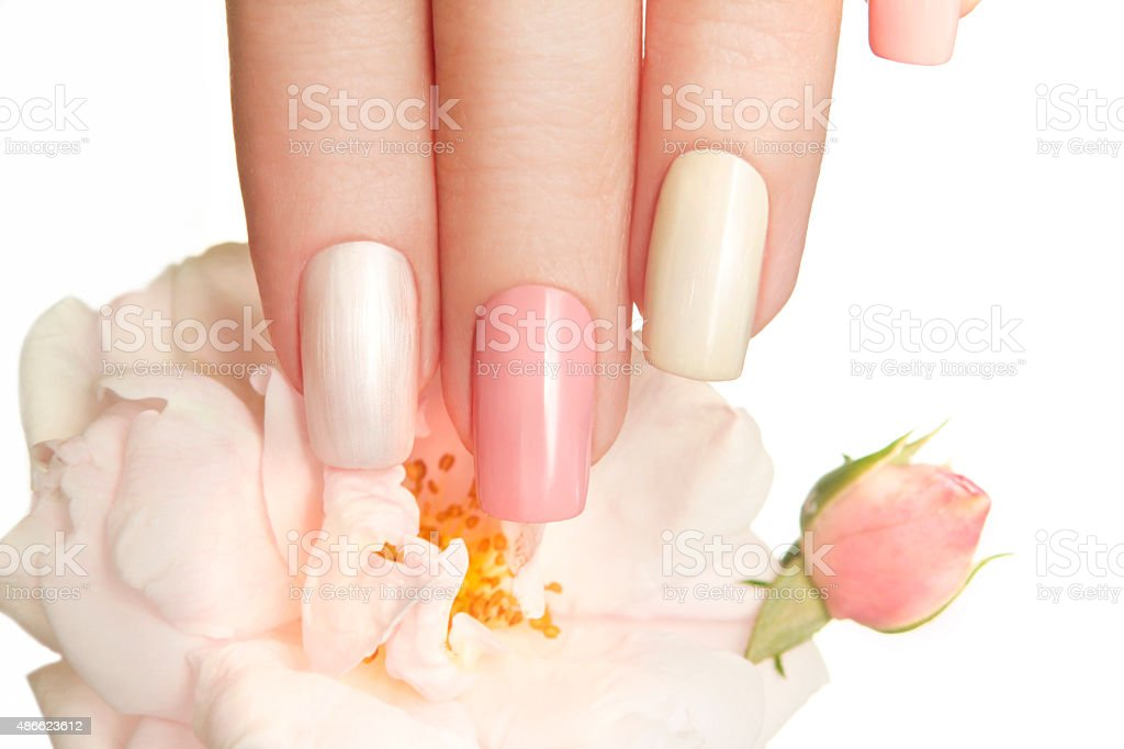 Pastel manicure with rose. stock photo