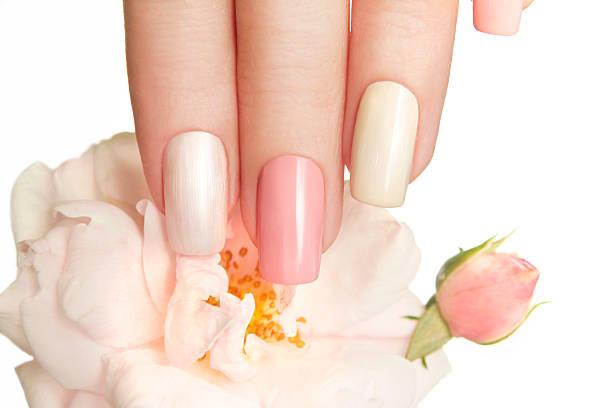 pastell maniküre mit rose. - nageldesign trend stock-fotos und bilder