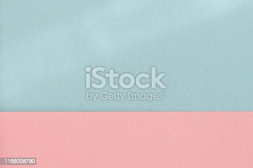 Pastel pink blue color paper background. Geometric figures, shapes. Abstract geometric flat composition. Empty space on monochrome cardboard.