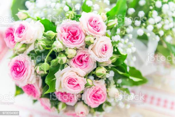 Pastel pink bouquet of roses picture id973204302?b=1&k=6&m=973204302&s=612x612&h= oxaf agzjxf h3woogijnaeyk8fpkofb0yrina inm=