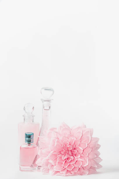 Pastel pink cosmetic product setting with flower on white background picture id885926234?b=1&k=6&m=885926234&s=612x612&w=0&h=e dqd9255ft9v36lcaada8b1zxu7x0t xvfufms9lks=