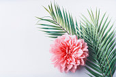Pastel pink flower and tropical palm leaves on white desktop background, top view