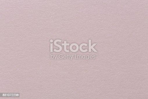 istock Pastel purple background spring Easter color design, vintage gru 831072238