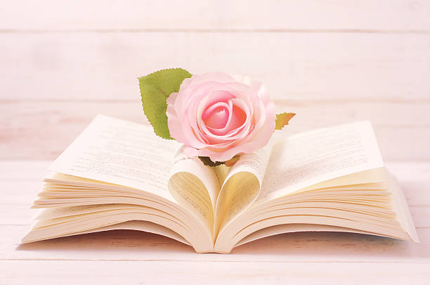 Pastel Rose and opened Book with heart shape stock photo