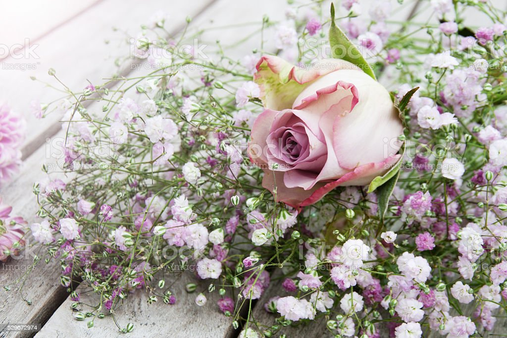 Pastel Rose in front of a bouquet of flowers stock photo