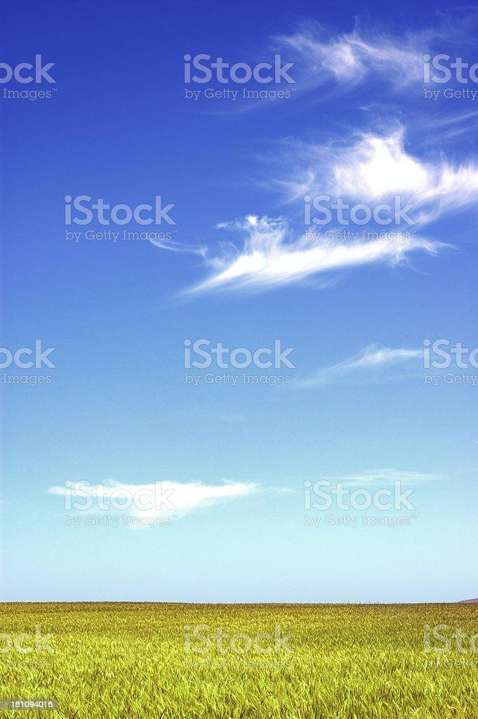 Pastel sky royalty-free stock photo