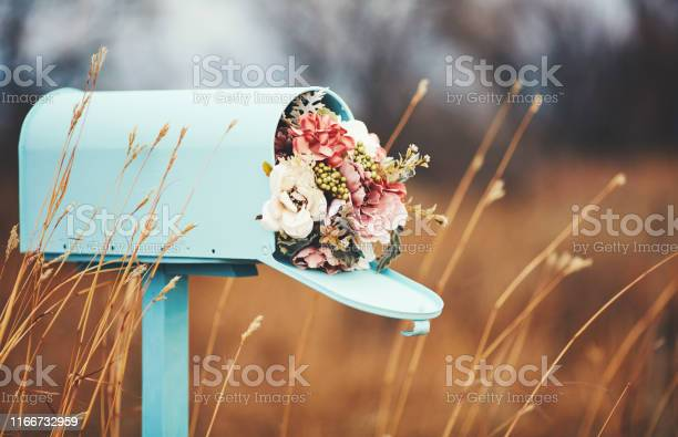 Pastel teal mailbox with bouquet of flowers picture id1166732959?b=1&k=6&m=1166732959&s=612x612&h=2gkds6nh 0ualorbxsmrqq8tcwt79q9pn o hcsn4ag=