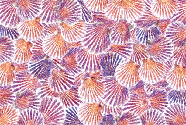 Pastel-Sea-Shell-Background foto