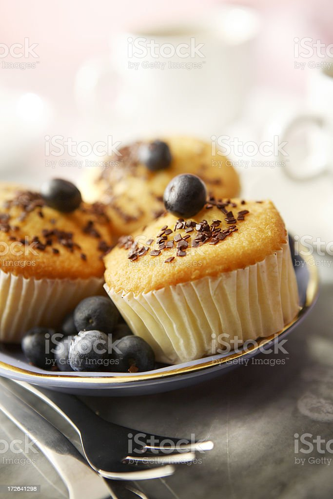 Pastry Stills: Muffin and Blueberries royalty-free stock photo